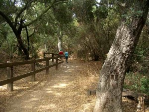03-oak-creek-canyon-loop-west