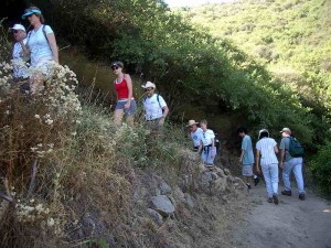 09-rosewood-trail
