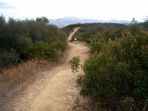 11-los-robles-overlook-trail