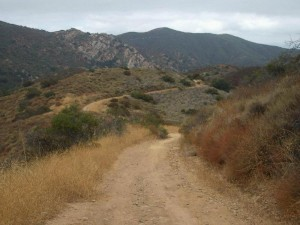 LR-meadow-vista-trail (2)