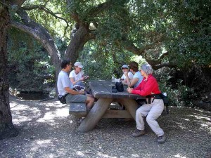 WW-little-falls-picnic-area