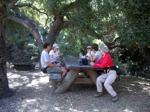 WW-little-falls-picnic-area