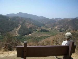 WW-lizard-rock-trail