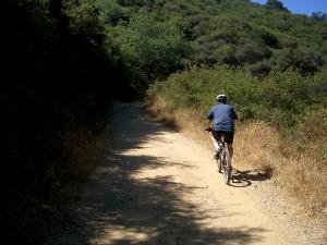 10-los-padres-trail